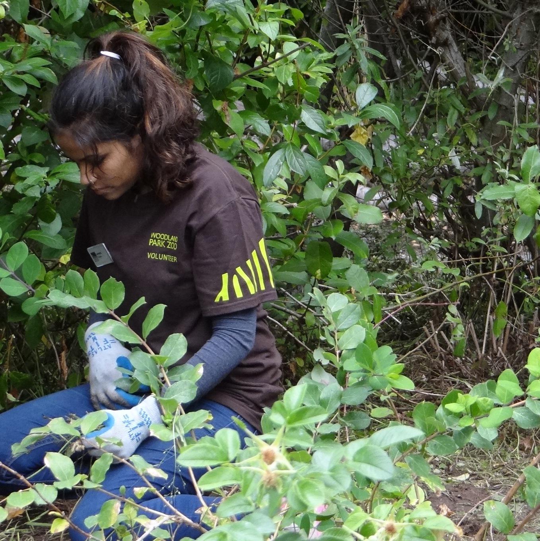 Volunteer Wildkeepers