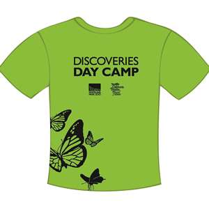 ddc shirt