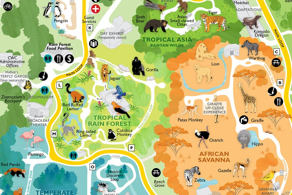 Maps Rentals Dine And Shop - Woodland Park Zoo Seattle WA