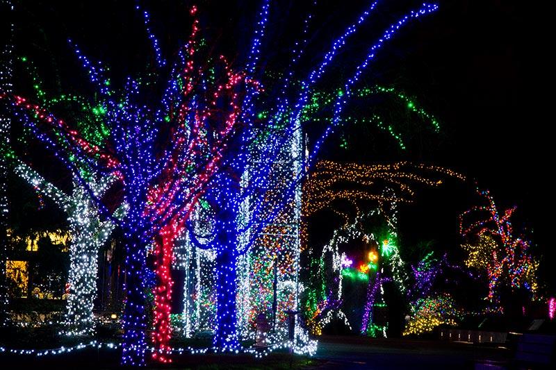 christmas lights zoo birmingham al