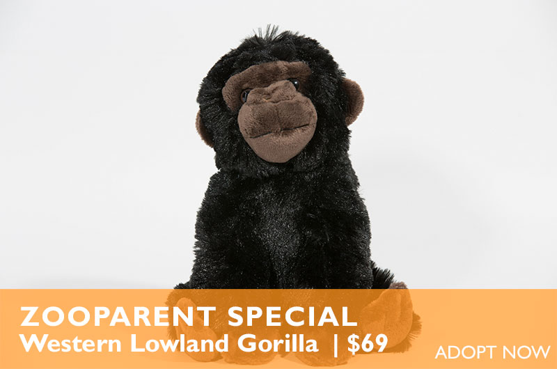 Become a ZooParent