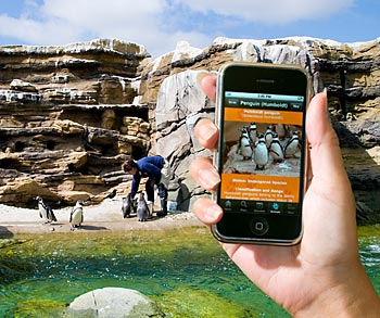 Woodland Park Zoo mobile app