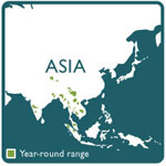 Asian elephant range map