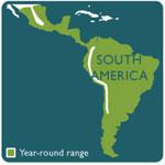 Jaguar range map