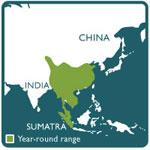 Serow range map