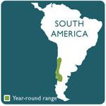 Pudu range map
