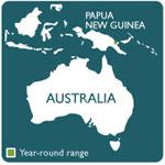 tree kangaroo range map