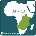 Zebra range map