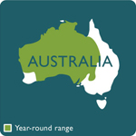 kookaburra range map