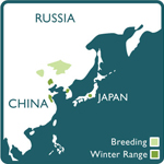red crowned crane range map