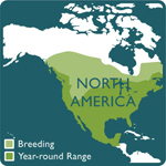 turkey vulture range map