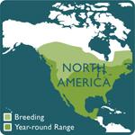 turkey vulture range map