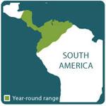 Basilisk range map