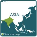 indian rock python range map