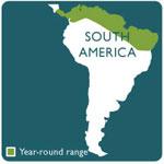 Panamanian frog range map