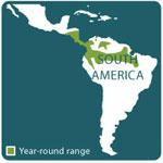 poison dart frog range map