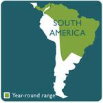 red footed tortose range map