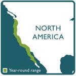 western pond turtle range map