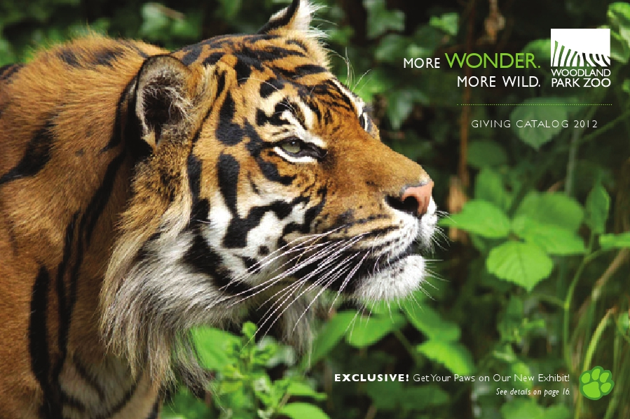 2011 Giving Catalog cover