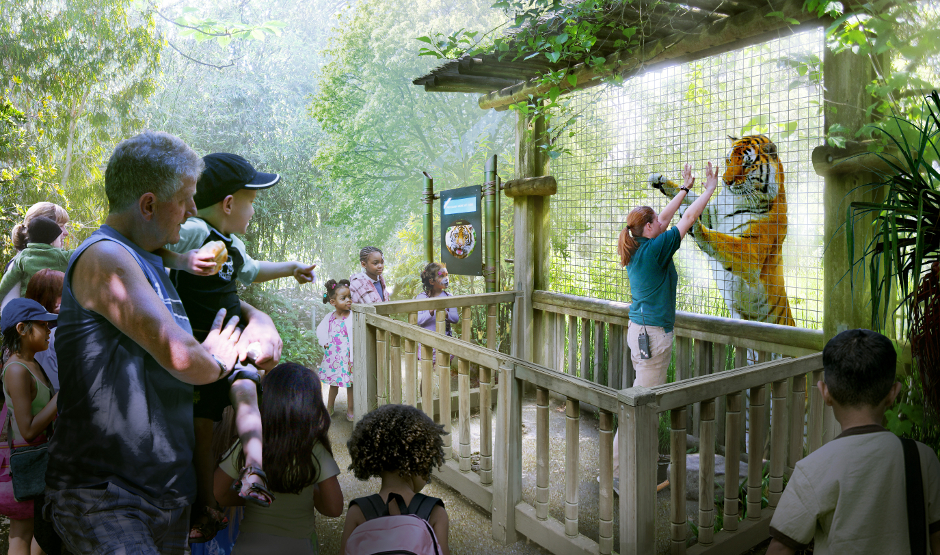 Malayan tiger exhibit woodland park zoo seattle wa - Garden state veterinary services ...