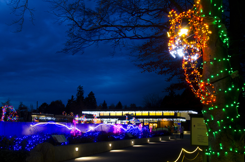 Holiday Private Parties At Wildlights Experience A Winter Wonderland Woodland Park Zoo S