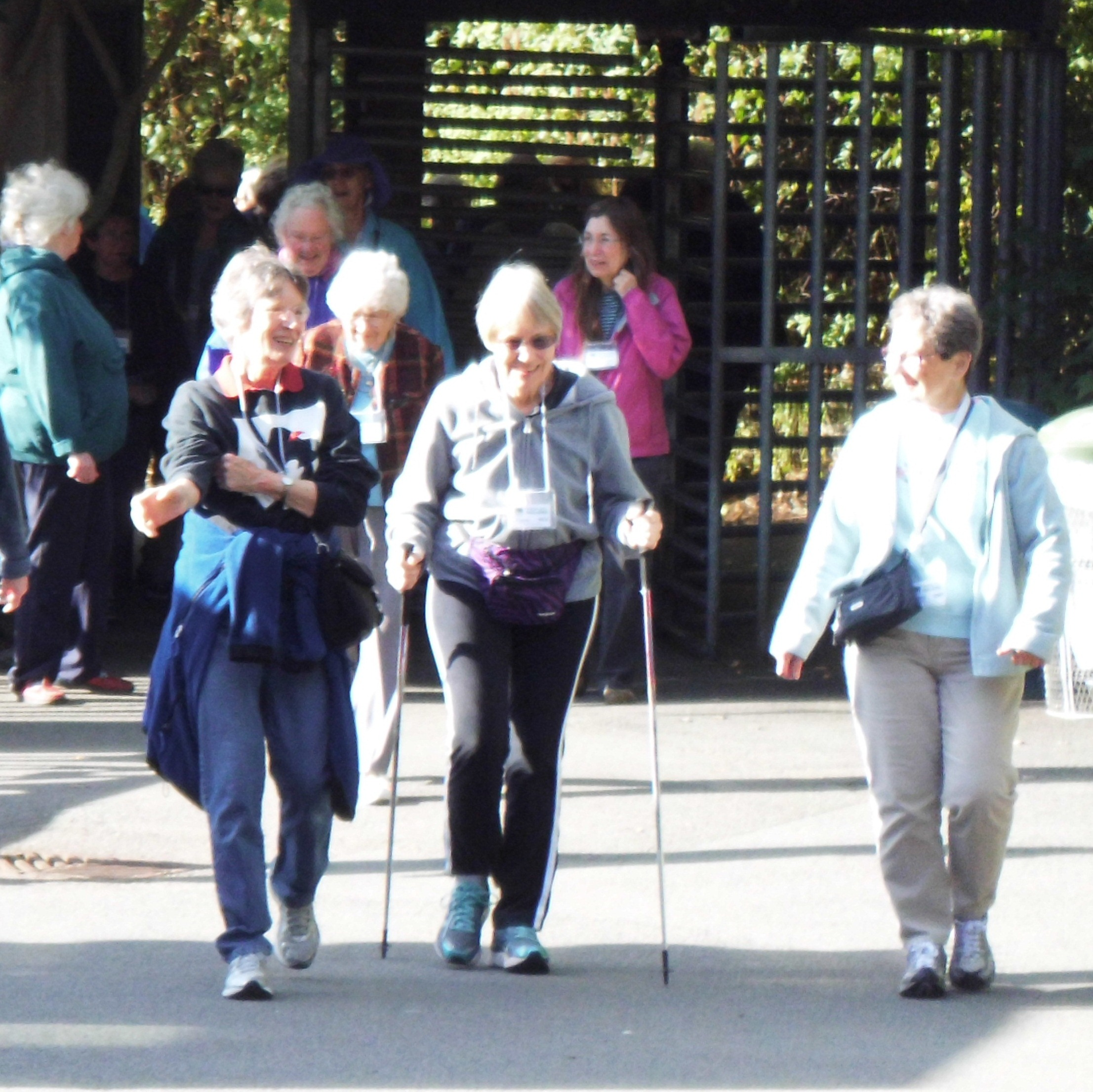 Senior Zoo Walkers