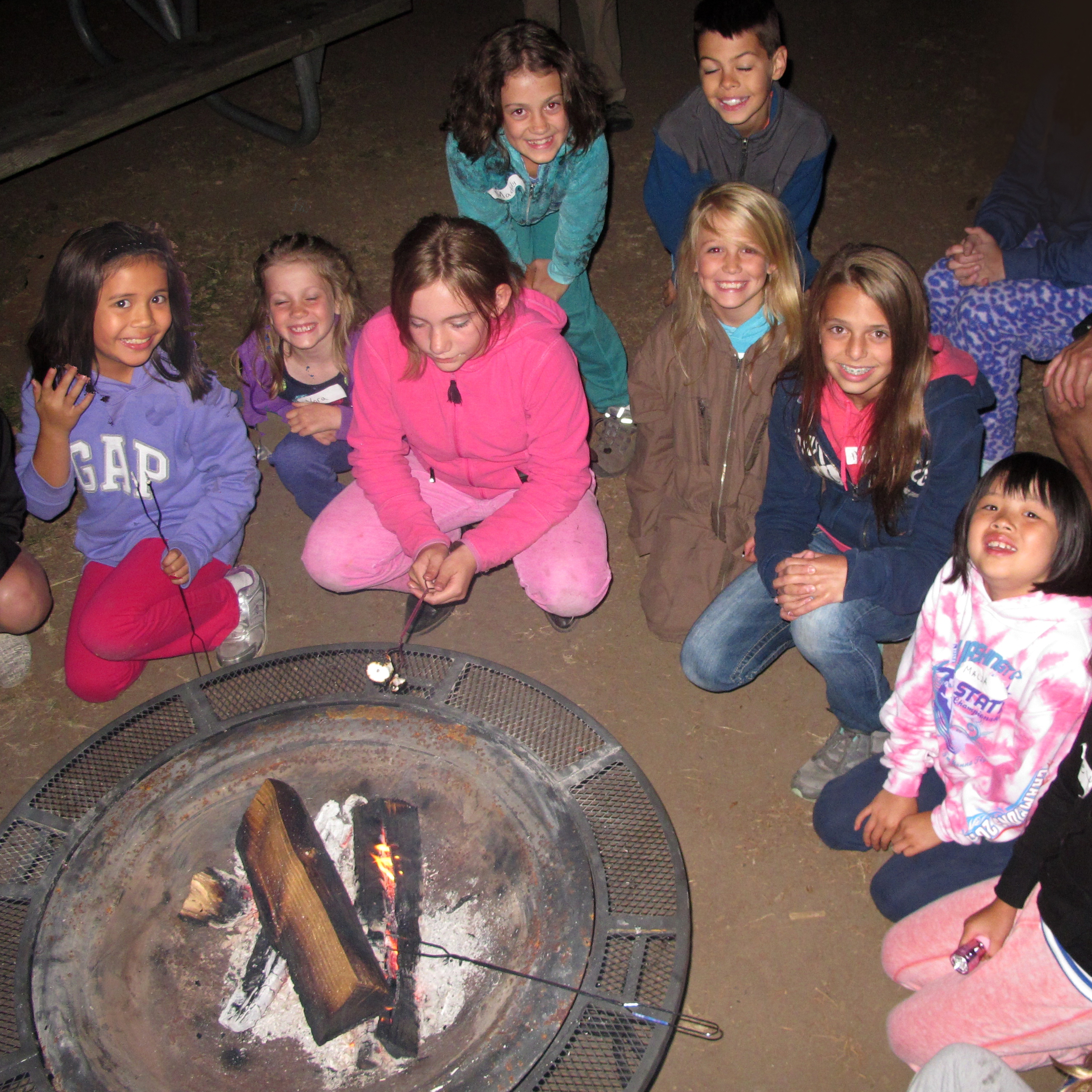Zoo Adventures: Living Wild Campfire
