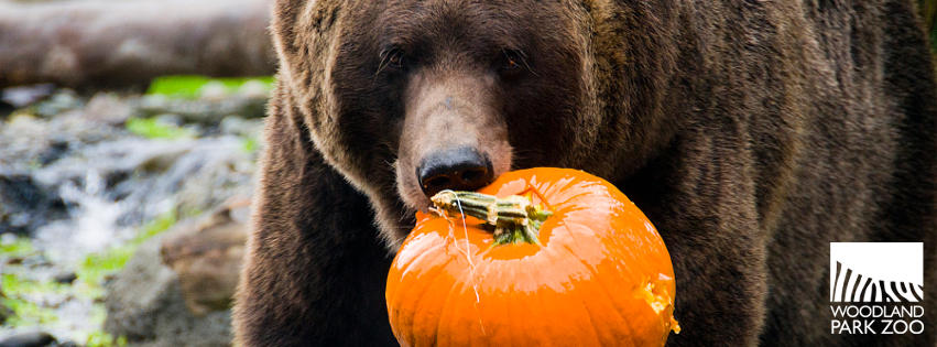 Grizzly Halloween Facebook Cover