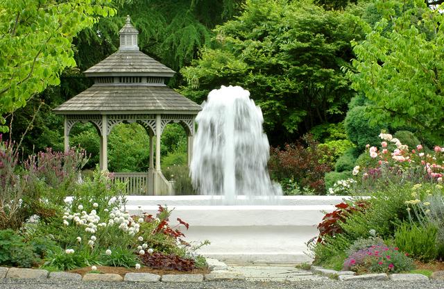 WP Rose Garden 1