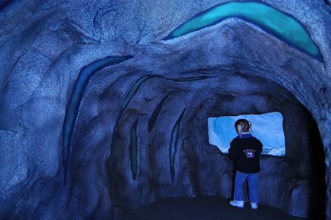 Zoomazium Cave